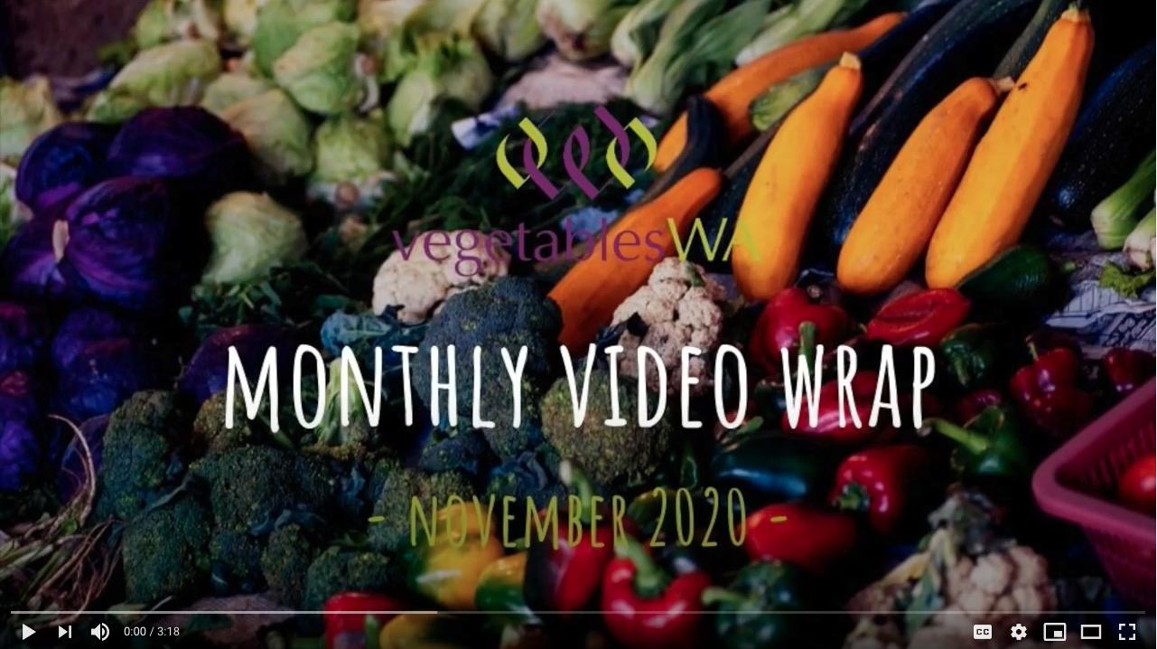 Monthly Wrap November 2020